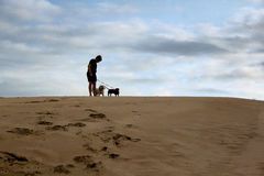 Boy Standing with Dogs On Dune Stock Photography