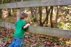 Autumn boy Royalty Free Stock Photography