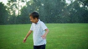 Free Boy Standing In Green Meadow. Child Getting Wet Under Water Sprinkler In Field Stock Images - 190696604