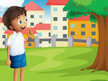 A boy standing near the tree Stock Image