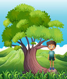 A boy standing on a root of a tree Stock Photos