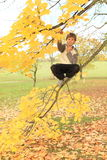 Boy standing on the tree Stock Photo