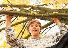 Boy standing on the tree Stock Photos