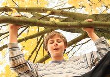 Boy standing on the tree Stock Photos