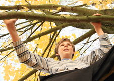 Boy standing on the tree Royalty Free Stock Image