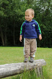 Boy standing on wooden bar. Little smiling boy standing on a wooden bar and balancing royalty free stock photography