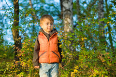 Boy stands in the autumn forest among the trees. A boy stands in the autumn forest among the trees and shrubs around the fallen yellow leaves. Sunny autumn day Stock Photos