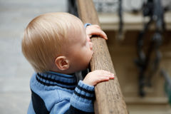 Boy stands at fencing holding on to banister Royalty Free Stock Image