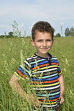 A boy stands in a field in the tall grass. Royalty Free Stock Image
