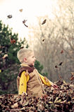 Boy playing in leaves Royalty Free Stock Photography
