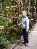 Boy stands on a suspension bridge. On forest background Stock Photography