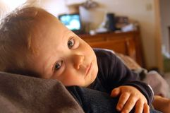 BOY STARING. A one-and-a-half year-old boy Royalty Free Stock Photo
