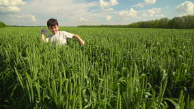 Boy Starts Up the Paper Plane in the Field of Wheat Against the Blue Summer Sky stock video footage