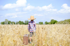 Boy in straw cowboy hat standing in golden wheat Royalty Free Stock Images