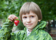 The boy with strawberry Stock Images