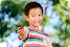 Boy and Strawberry. Young Thai boy carry one strawberry. Selective focus on strawberry Royalty Free Stock Images