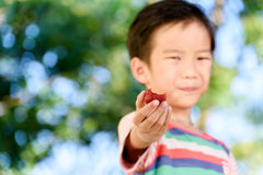 Boy and Strawberry. Young Thai boy carry one strawberry. Selective focus on strawberry Royalty Free Stock Photography