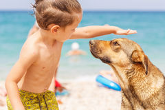 Boy with street dog Royalty Free Stock Images