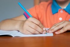 Boy Student Royalty Free Stock Photography