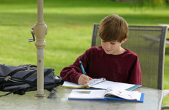 Boy Studying Stock Image
