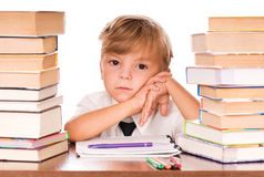 Boy studying Royalty Free Stock Image