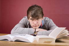 Boy Studying. Young man studying in a home environment Royalty Free Stock Photography