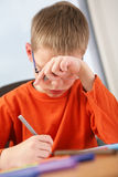 Boy studying. Royalty Free Stock Images