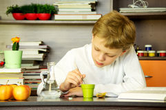 The boy is studying biology Royalty Free Stock Images