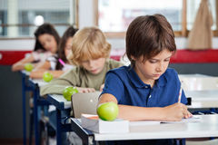Boy Studying At Desk In Classroom Royalty Free Stock Photos