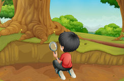 A boy studying the ground in the forest Royalty Free Stock Image