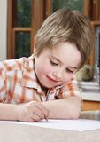 Boy studying homework royalty free stock images