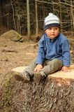 Boy on stump Stock Image