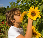 Boy in summer colorful garden Royalty Free Stock Photos
