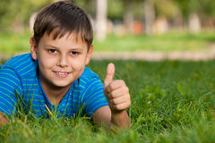 Boy on the summer grass Royalty Free Stock Image
