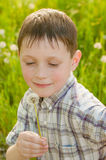 Boy on summer nature with dandelions Stock Photos