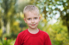 Boy in summer park. Portrait of a cute little boy in summer park Stock Images