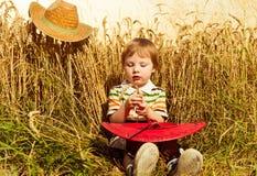 Boy at summer wheat Royalty Free Stock Image