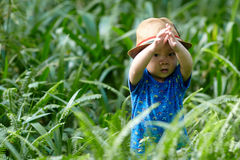 Boy  in sun straw-hat Royalty Free Stock Photography