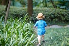 Boy  in sun straw-hat Stock Photo