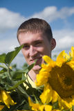 Boy with sunflower Stock Photography