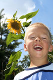 Boy and sunflower Royalty Free Stock Photos