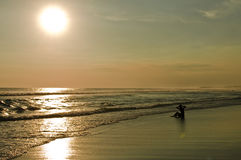 Boy at Sunset on Bali. Boy On A Beach At Sunset With Waves.Born free royalty free stock photo