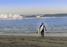 Boy Surfer Walking Out Of Ocean Surf Royalty Free Stock Image