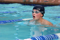 Boy swimming. In a gala stock photography