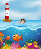A boy swimming at the beach with a lighthouse. Illustration of a boy swimming at the beach with a lighthouse Stock Photo