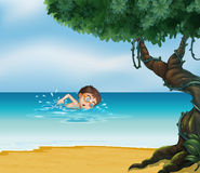 A boy swimming at the beach with an old tree Royalty Free Stock Images