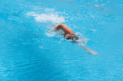 A boy is swimming the butterfly stroke. In swimming pool Stock Photography