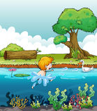 A boy swimming with a duck in the river. Illustration of a boy swimming with a duck in the river Stock Image