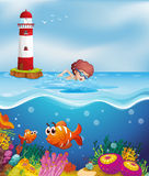 A boy swimming with fishes and corals at the beach. Illustration of a boy swimming with fishes and corals at the beach Stock Image