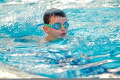 Boy swimming Freestyle royalty free stock image